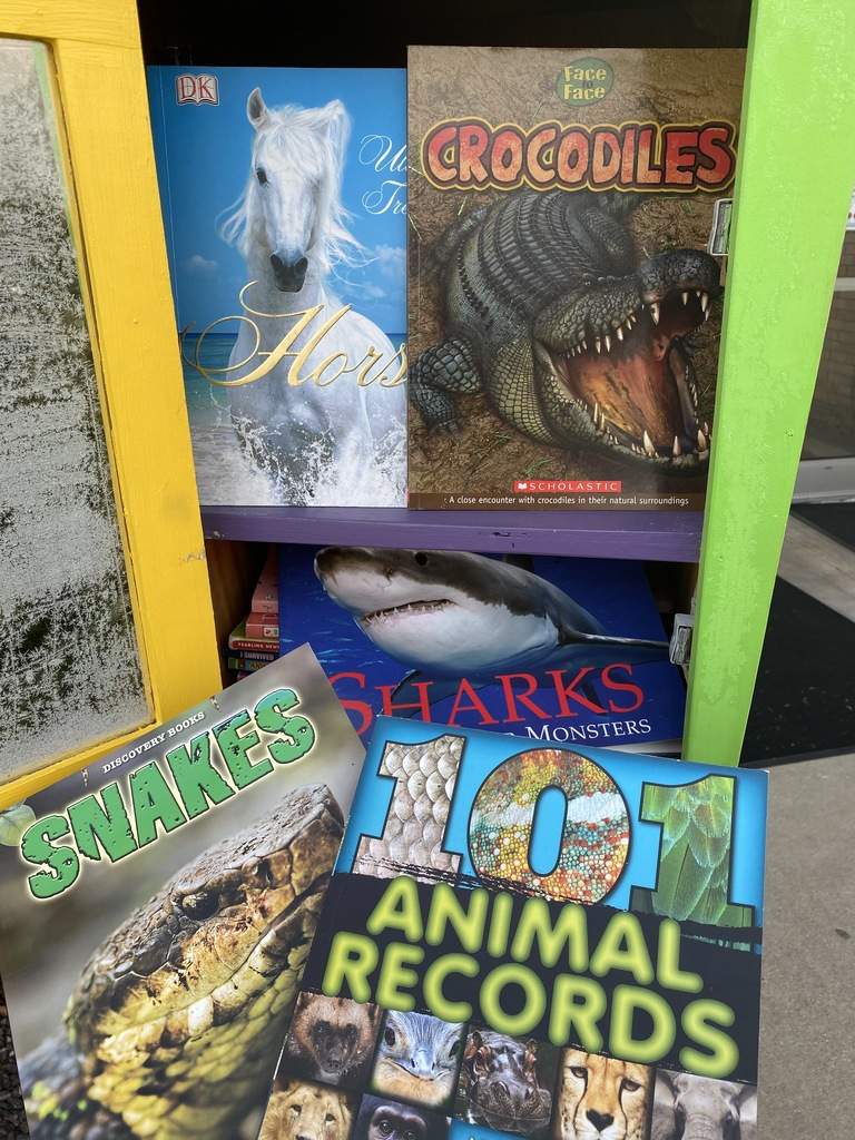 Horses, sharks, and crocs, oh my!