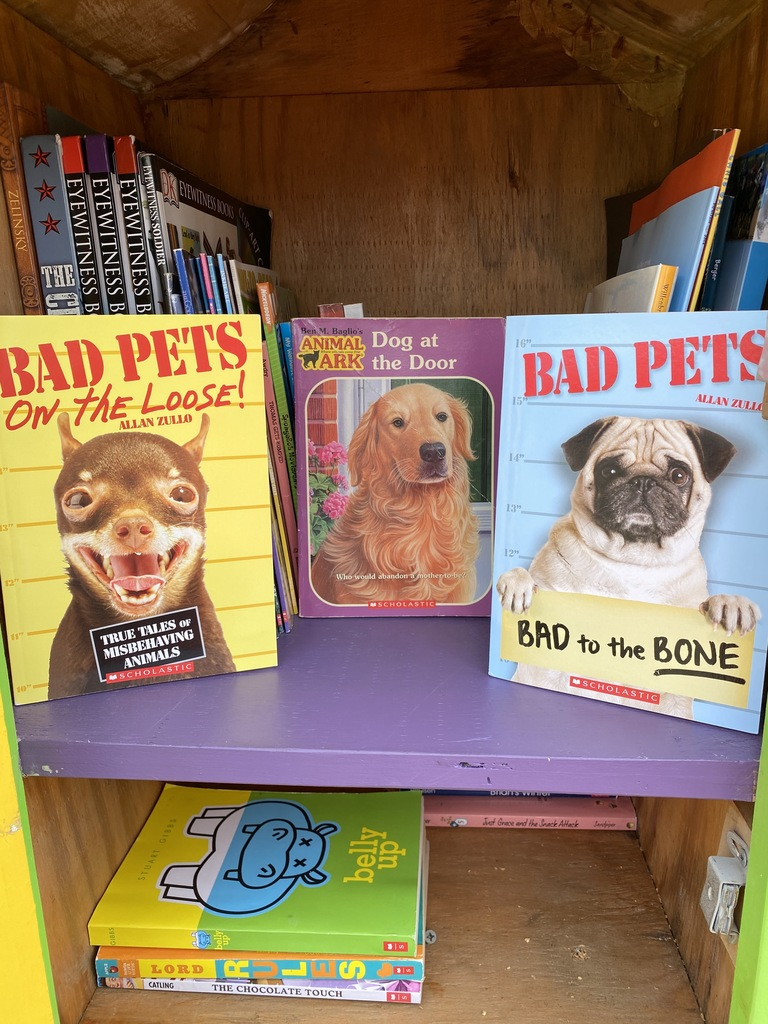 Pet chapter books