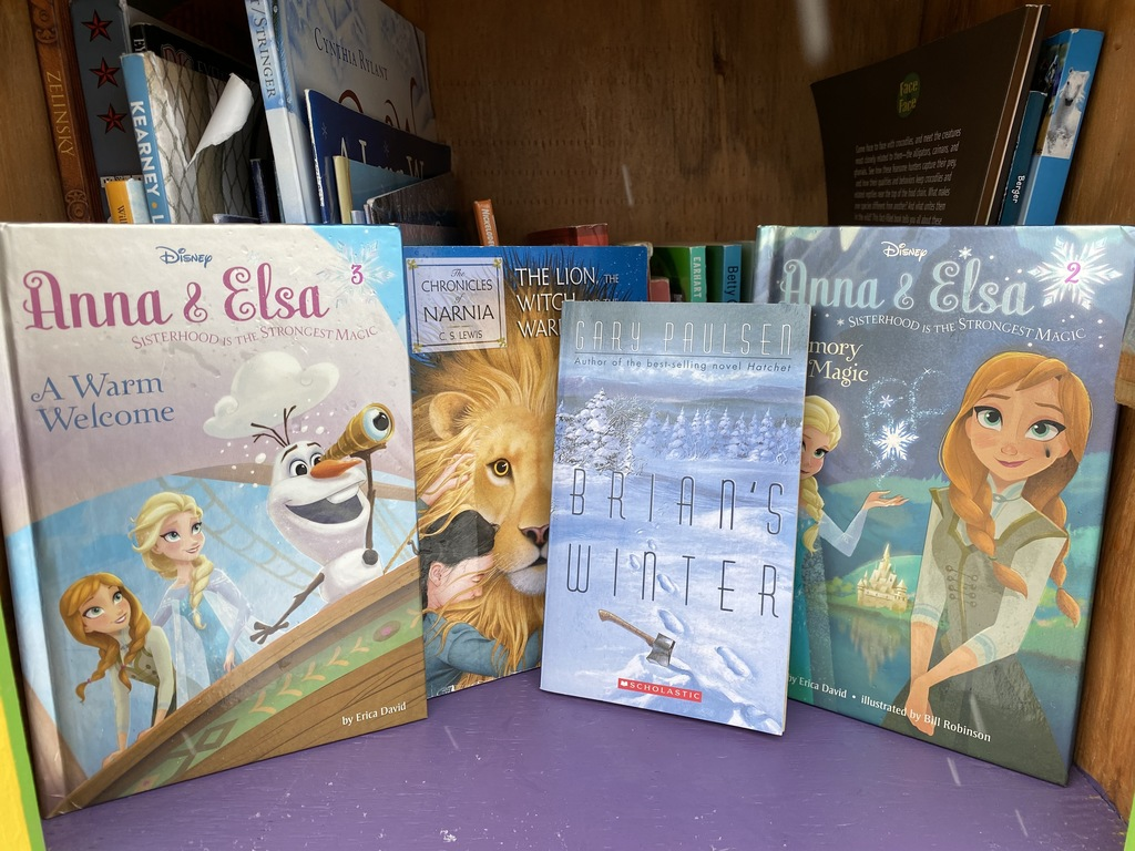 Snow-themed chapter books